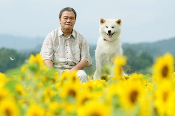 Star Watching Dog (Japanese)