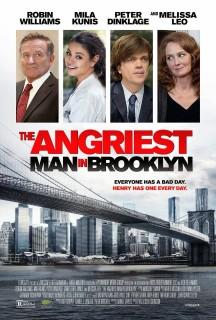 2013 angriest_man_in_brooklyn