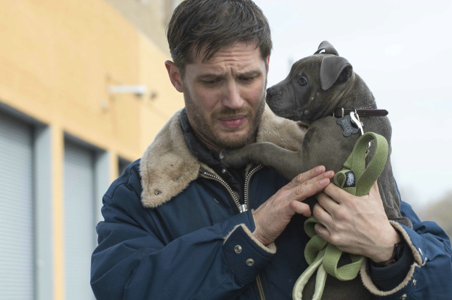 THE DROP - Tom Hardy