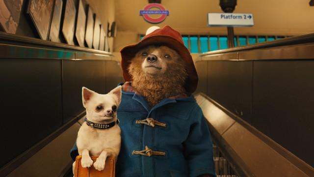 Paddington_escalator_ug_069_120_v001_003_MM_jpeg