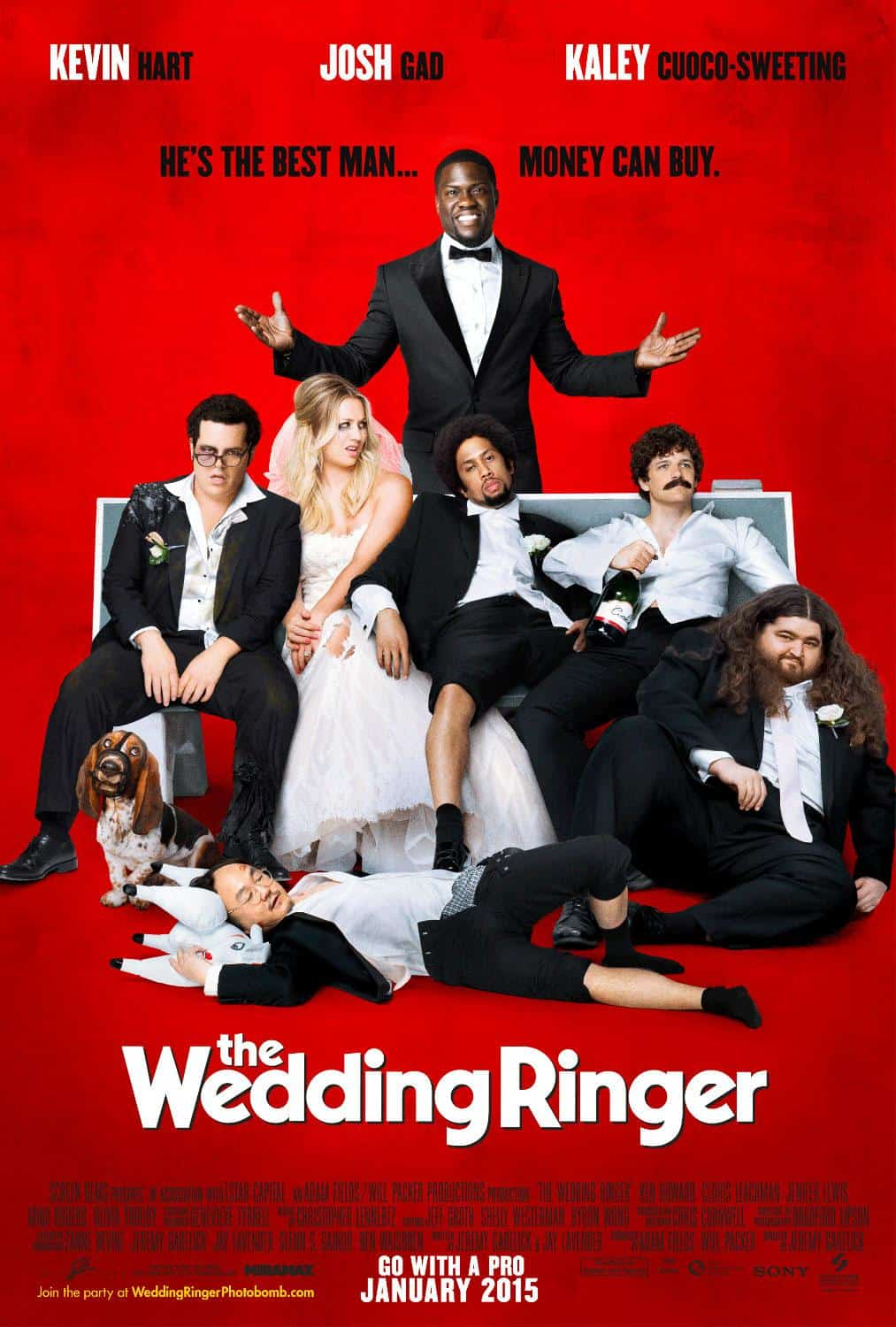 The Wedding Ringer – Review