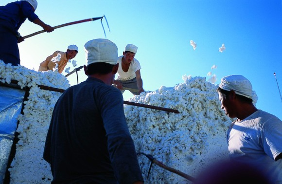 'Cotton' is among the eight Chinese independent documentaries, a new programme at this year's SGIFF.