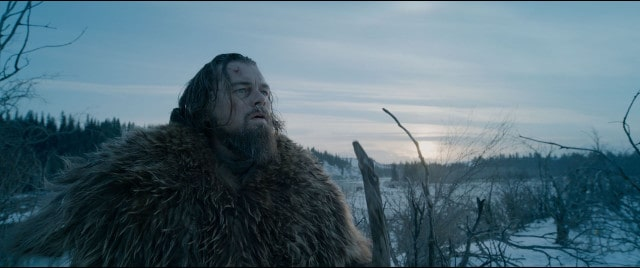 The Revenant - DiCaprio
