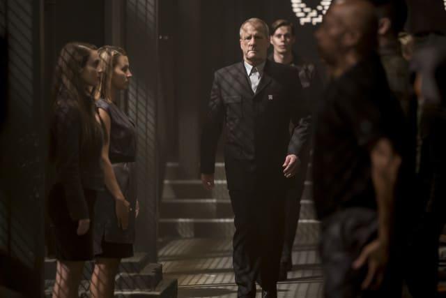 The Divergent Series: Allegiant - David