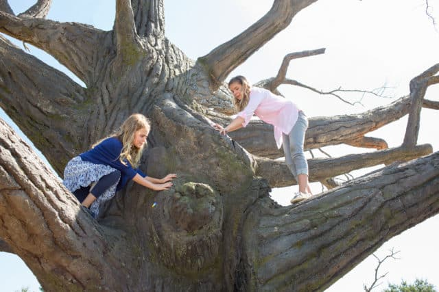 Abbie (BRIGHTON SHARBINO) and Anna (KYLIE ROGERS, left) climb the cottonwood tree in Columbia Pictures' MIRACLES FROM HEAVEN.