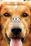 A Dog's Purpose (2017) – Review